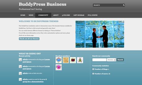 BuddyPress Business community page
