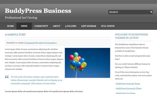 BuddyPress Business post page