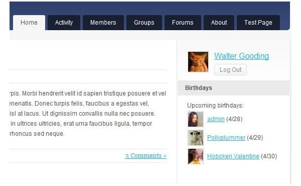 Displaying upcoming birthdays in BuddyPress.