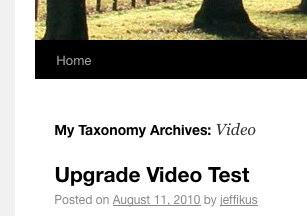 Twenty ten template wordpress free by the wordpress team taylor.