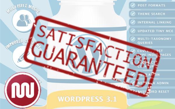 Guaranteed premium wordpress plugins