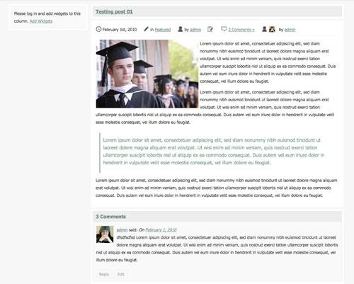 Scholar blog post