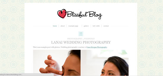 Blissful blog free wordpress theme