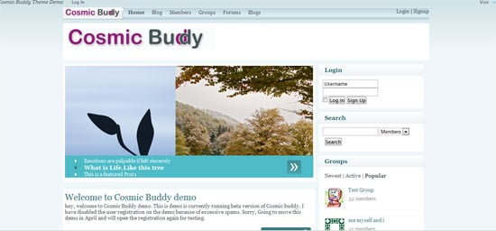 BP Themes Cosmic Buddy free wordpress theme