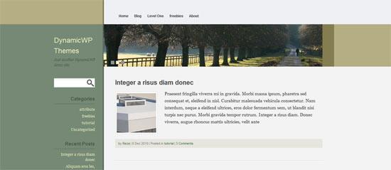 Dynamic WP Lempong free wordpress theme