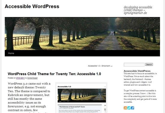 Accessible free wordpress theme