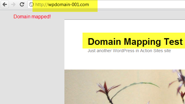 mapped domain with new site at own domain