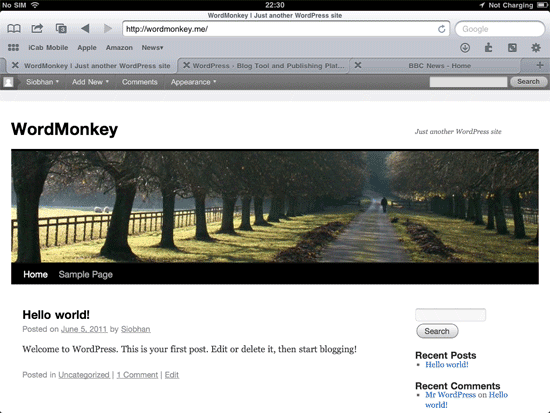 wordpress installed using iPad