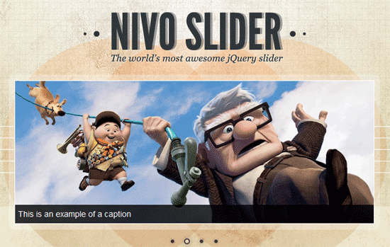 image of nivo slider
