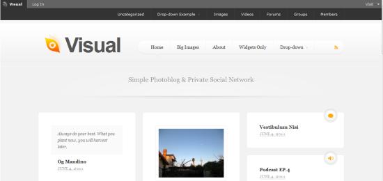 Visual WordPress Theme from DevPress