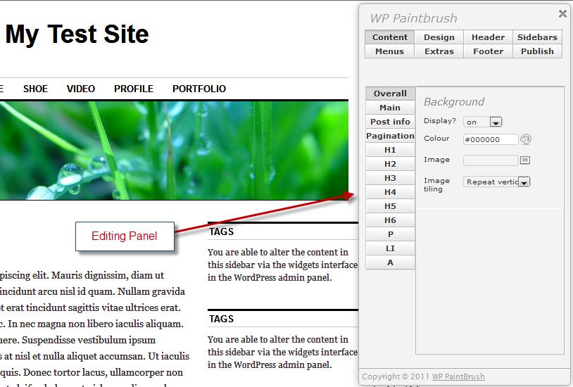 WP Paintbrush editor screen