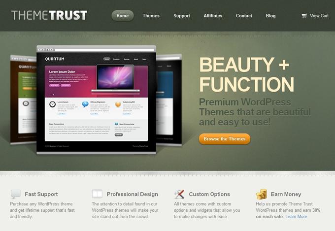 10 Small WordPress Theme Providers That Pack a Big Punch - WPMU DEV