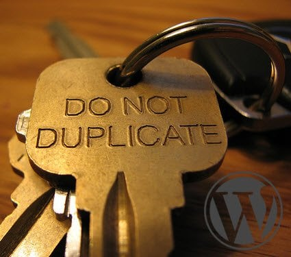 avoid duplicatee content on WordPress