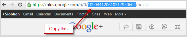 the 221 digit profile ID can be found in your Profile's URL