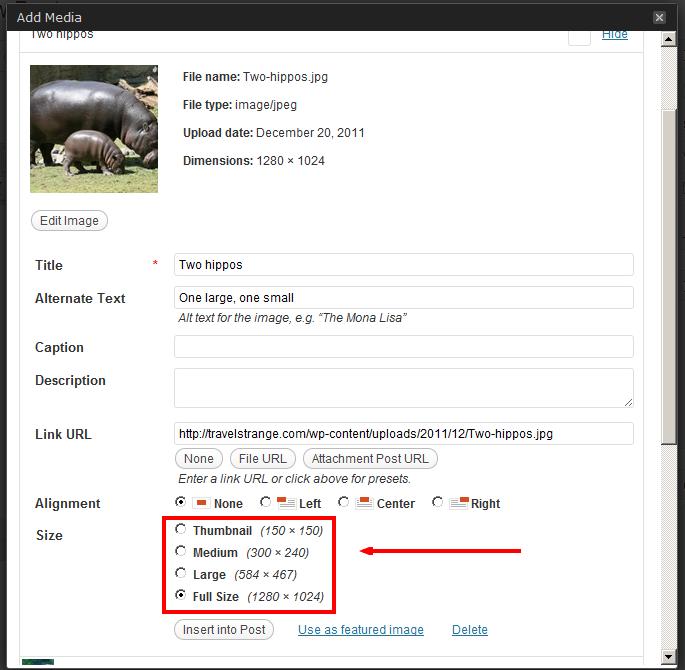 Multiple image sizes WordPress