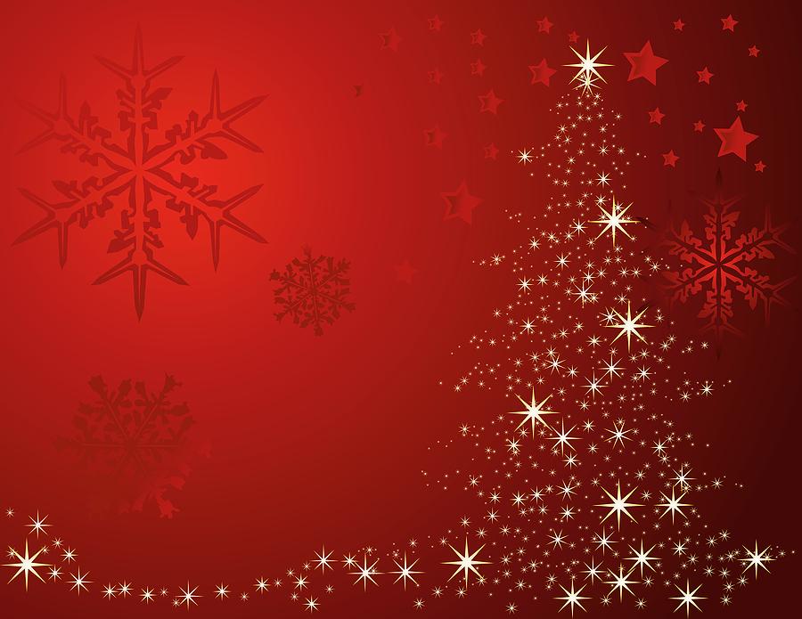 bigstock_Christmas_Tree_3727097