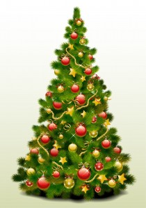 Merry Christmas for the WPMU crew