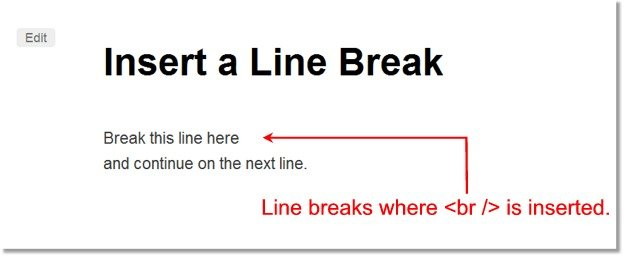 Manually Insert a Line Break in WordPress - WPMU DEV