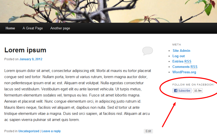 Add the Facebook subscribe button to your WordPress site