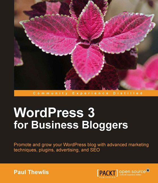 The new eBook: WordPress 3 For Business Bloggers