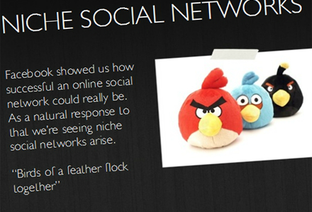 niche-social-networks