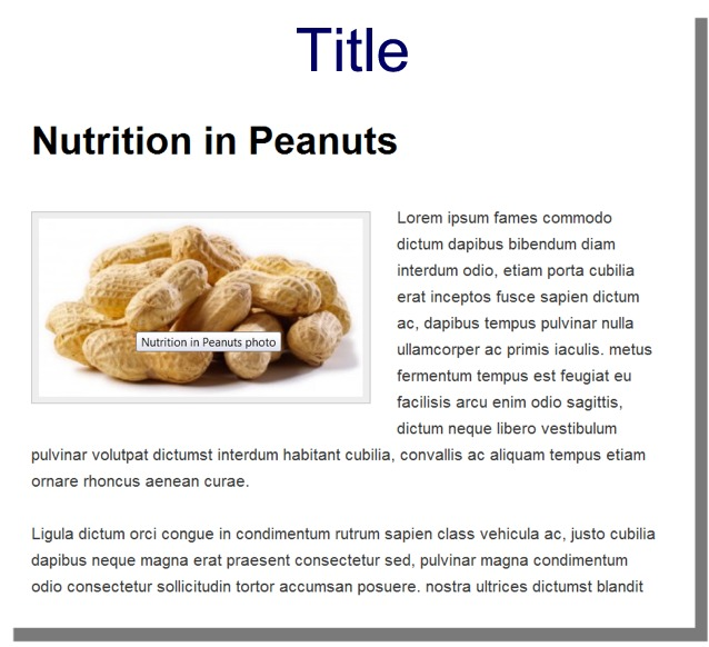 View of the pop-up title text on an image in WordPress.