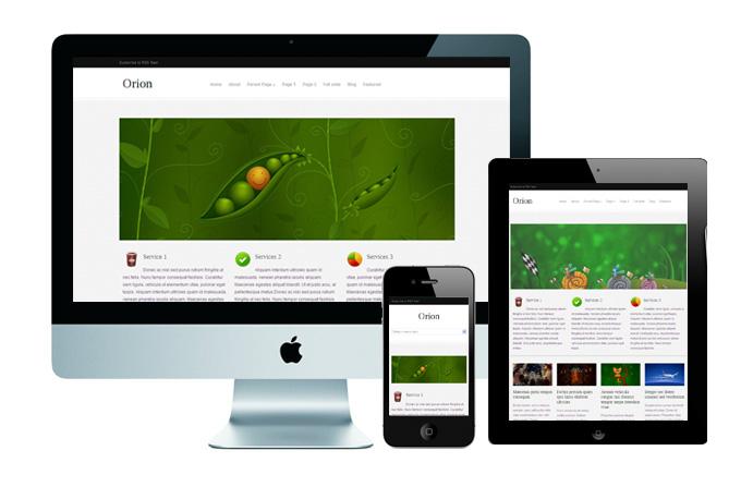orion - Responsive theme miễn phí cho WordPress Multisite từ wpmudev