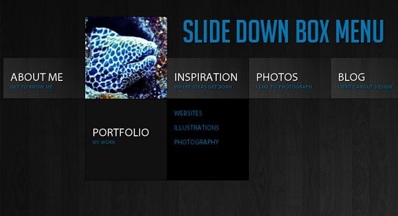 WordPress Menu Plugins - jQuery Slide Down Box Menu Tutorial