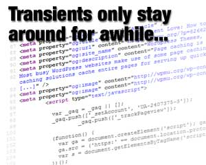 WordPress Transients - Suggests how code stored as transients have a limited lifespan