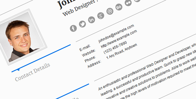 resume theme responsive cv aegolius wordpress theme