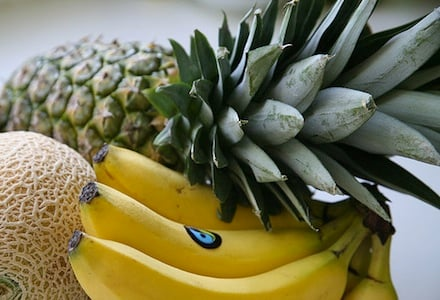 WordPress Spam Plugin - WP Pineapple