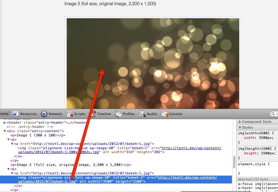 WordPress Retina plugin on full-size images