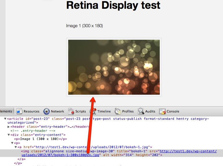 WordPress force displaying Retina-quality images