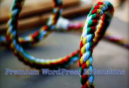 WordPress Premium