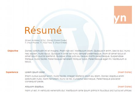 WordPress Websites : The Resume Site