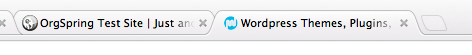 WordPress Title Settings