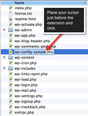 WordPress 5 Minute Install