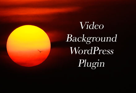 WordPress theme video background