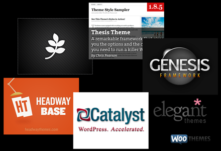 PageLines, Thesis, Genesis, Headway Themes, Catalyst Theme, Elegant Themes, WooThemes