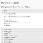 WordPress Sidebar - screenshot of Dynamic Widgets plugin admin panel
