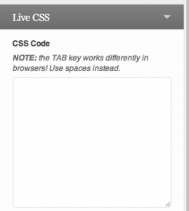 WordPress CSS Plugin