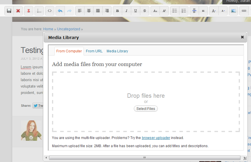 Edit WordPress Posts on the Front End with the Raptor Editor
