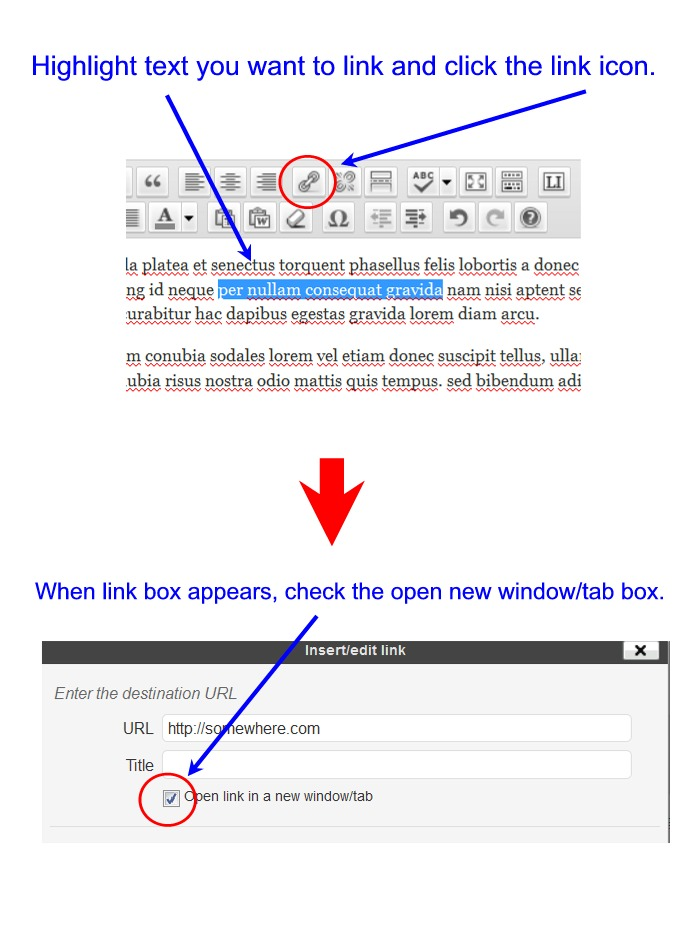 how to open pdf link in new window