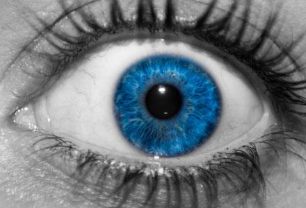 Retina images for WordPress