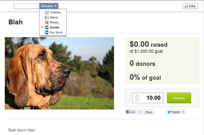 WePay Allows You To Promote Your Cause And Raise Funds on Facebook.