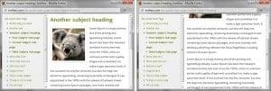 WordPress Site Popup Help - Screenshot of example double-pane popup window
