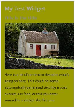 WordPress Widgets - Screenshot of a test widget 2