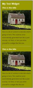 WordPress Widgets - Screenshot of a test widget 5