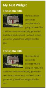 WordPress Widgets - Screenshot of a test widget 6