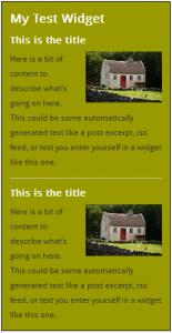 WordPress Widgets - Screenshot of a test widget 7